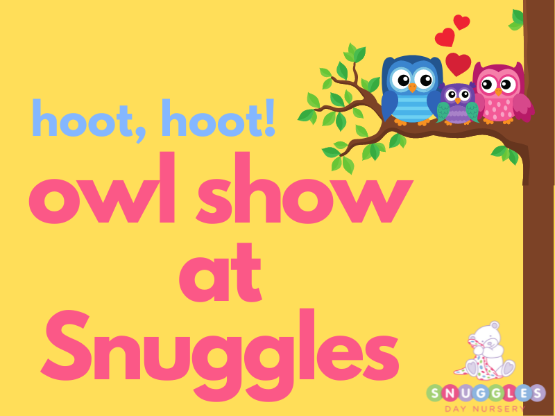 World of Owls at Snuggles